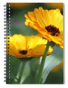 Sunny Day Flowers Spiral Notebook