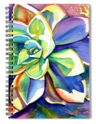 Sunny Day Succulent Spiral Notebook