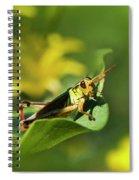 Green Grasshopper Spiral Notebook