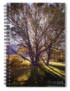 Sunny Mono Tree Spiral Notebook