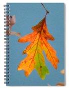 Sunny Oak Leaf Spiral Notebook