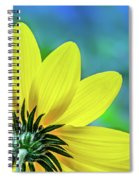 Sunny Outlook Spiral Notebook