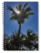 Sunny Palm Spiral Notebook