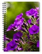 Sunny Petunias 1 Spiral Notebook