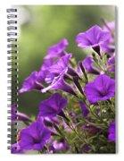 Sunny Petunias 2 Spiral Notebook