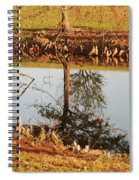 Sunny Pond Spiral Notebook