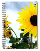 Sunny Slopes Spiral Notebook