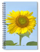 Sunny Sunflower Spiral Notebook
