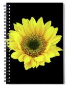 Sunny Sunflower Black Yellow Spiral Notebook