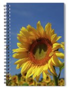 Sunny Sunflower Soloist With Backup Chorus Spiral Notebook