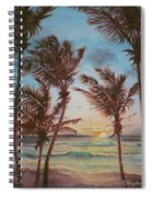 Sunrise At Cattlewash 3 Spiral Notebook