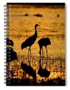 Sunrise At The Crane Pools Spiral Notebook