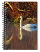 Sunrise Elegance In The Mist Spiral Notebook