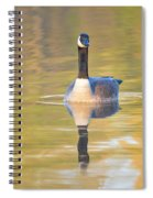 Sunrise Goose Spiral Notebook