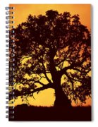 Sunrise Gum Spiral Notebook