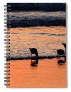 Sunrise Harmony Spiral Notebook