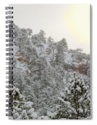 Sunrise In Snowstorm In The Pike National Forest Spiral Notebook