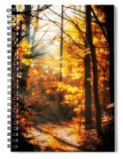 Sunrise Mist Through The Trees Spiral Notebook