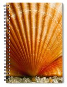 Sunrise On Shell Spiral Notebook