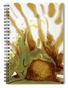 Sunrise On The Desert Playa Spiral Notebook