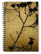 Sunrise Sparkle Spiral Notebook