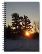Sunrise Under Pine Tree Spiral Notebook