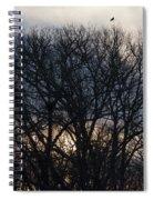 Sunrise With Bird Spiral Notebook
