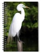 Sunrise With The Egret  Spiral Notebook