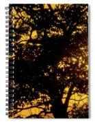 Sunset And Trees - San Salvador I Spiral Notebook