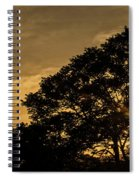Sunset And Trees - San Salvador Spiral Notebook