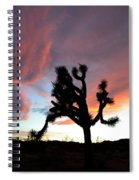 Sunset At Joshua Tree 2 Spiral Notebook
