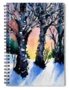 Sunset Birches On The Rise Spiral Notebook