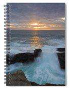 Sunset Breach Spiral Notebook