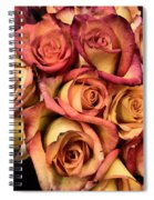 Sunset Colored Roses Spiral Notebook