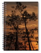 Sunset In The Pine Woods Spiral Notebook