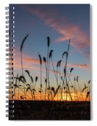 Sunset In The Weeds Spiral Notebook
