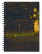 Sunset In The Woods Spiral Notebook