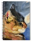 Sunset Kitty Spiral Notebook