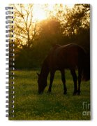 Sunset Over A Spring Meadow Spiral Notebook