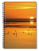 Sunset Over Arcata Marsh, With Avocets Spiral Notebook
