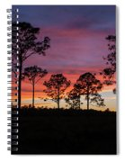 Sunset Pines Spiral Notebook