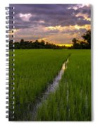Sunset Rice Fields In Cambodia Spiral Notebook