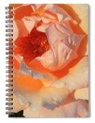 Sunset Rose Spiral Notebook