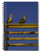 Sunset Seagulls Spiral Notebook
