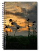 Sunset Silhouettes In June Spiral Notebook