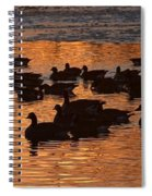 Sunset Silhouettes Spiral Notebook
