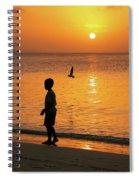 Sunset Stroll Spiral Notebook