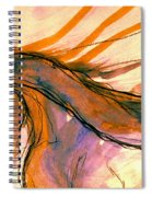Sunset Submission Spiral Notebook