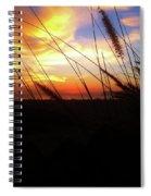 Sunset Through The Sea Grass Spiral Notebook