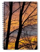 Sunset Through The Tree Silhouette Spiral Notebook